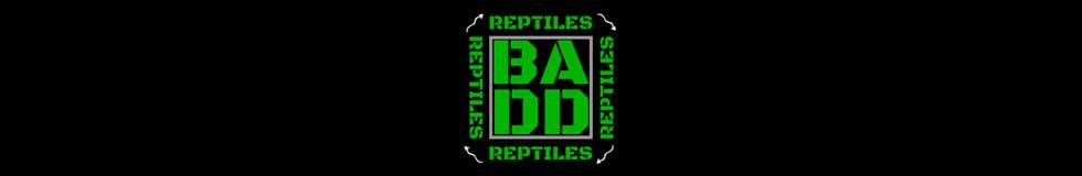 BADD Reptiles