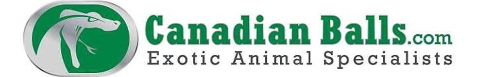 Canadianballs.com