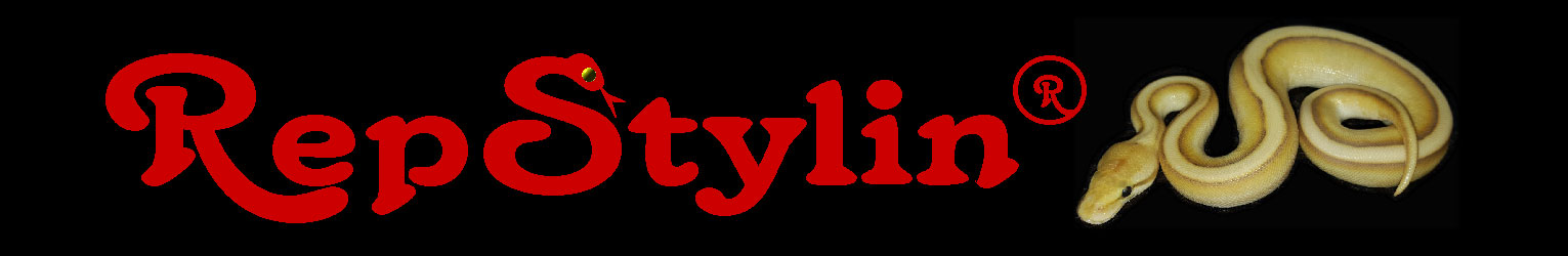RepStylin