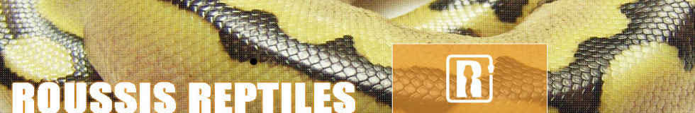 Roussis Reptiles