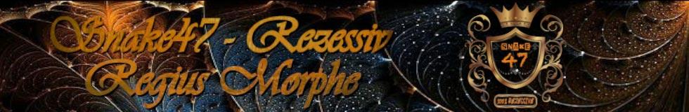 Snake47 - Rezessiv Regius Morphe