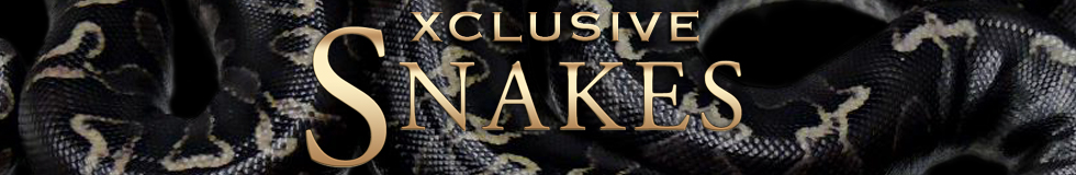 Xclusive Snakes
