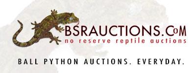 bsrauctions.com
