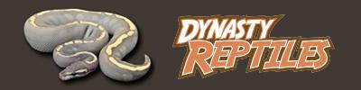 Dynasty Reptiles